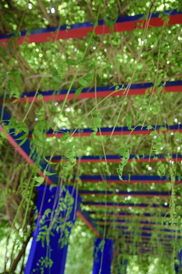 Jardin-majorelle, Marrakech by The Belle Blog