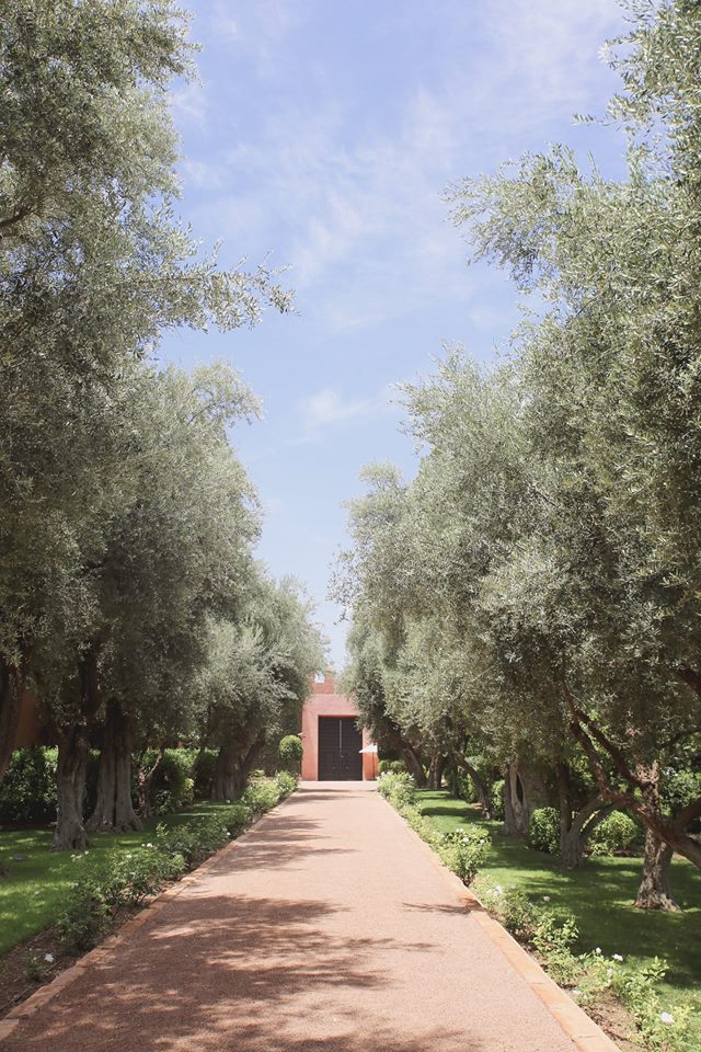 Adventures in Marrakech, exploring hotel La Mamounia by The Belle Blog